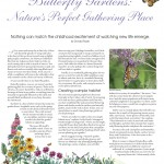 butterfly_gardens_natures_perfect_gathering_place